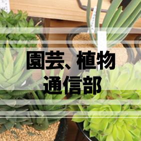 """園芸植物通販"""""""
